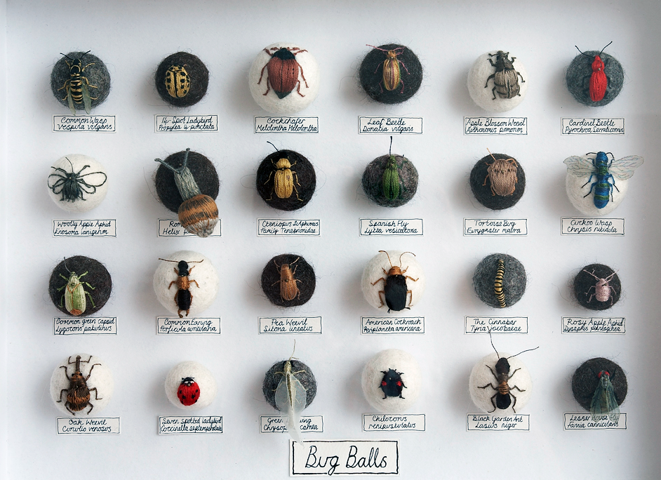 The Insect Art Of Claire Moynihan Bug Balls Insect Art