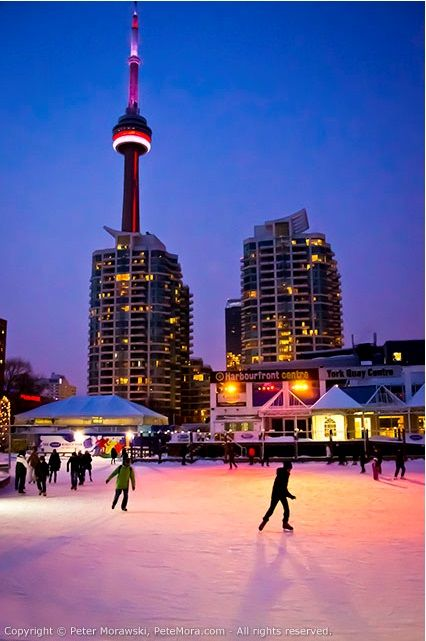 Skating at Harbourfront Centre.  Great fun and great views!  Pic by Peter Morawski.