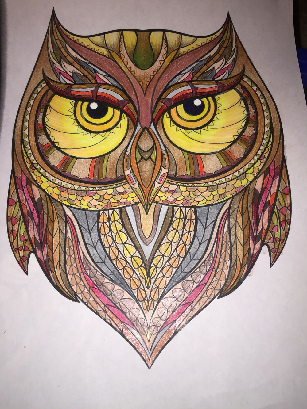 One wise owl