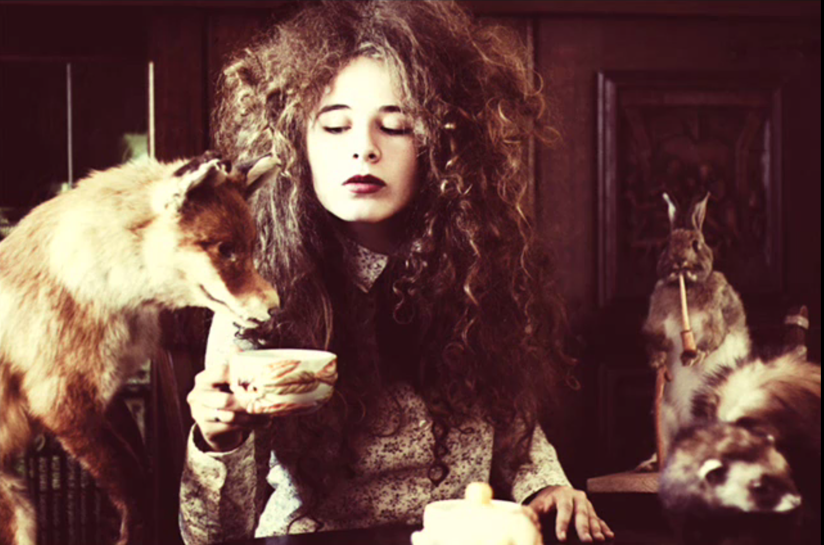 Artist/photographer-?   Tea with a fox and friends.