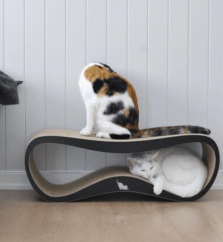 Griffoir pour chat design lui my kotty