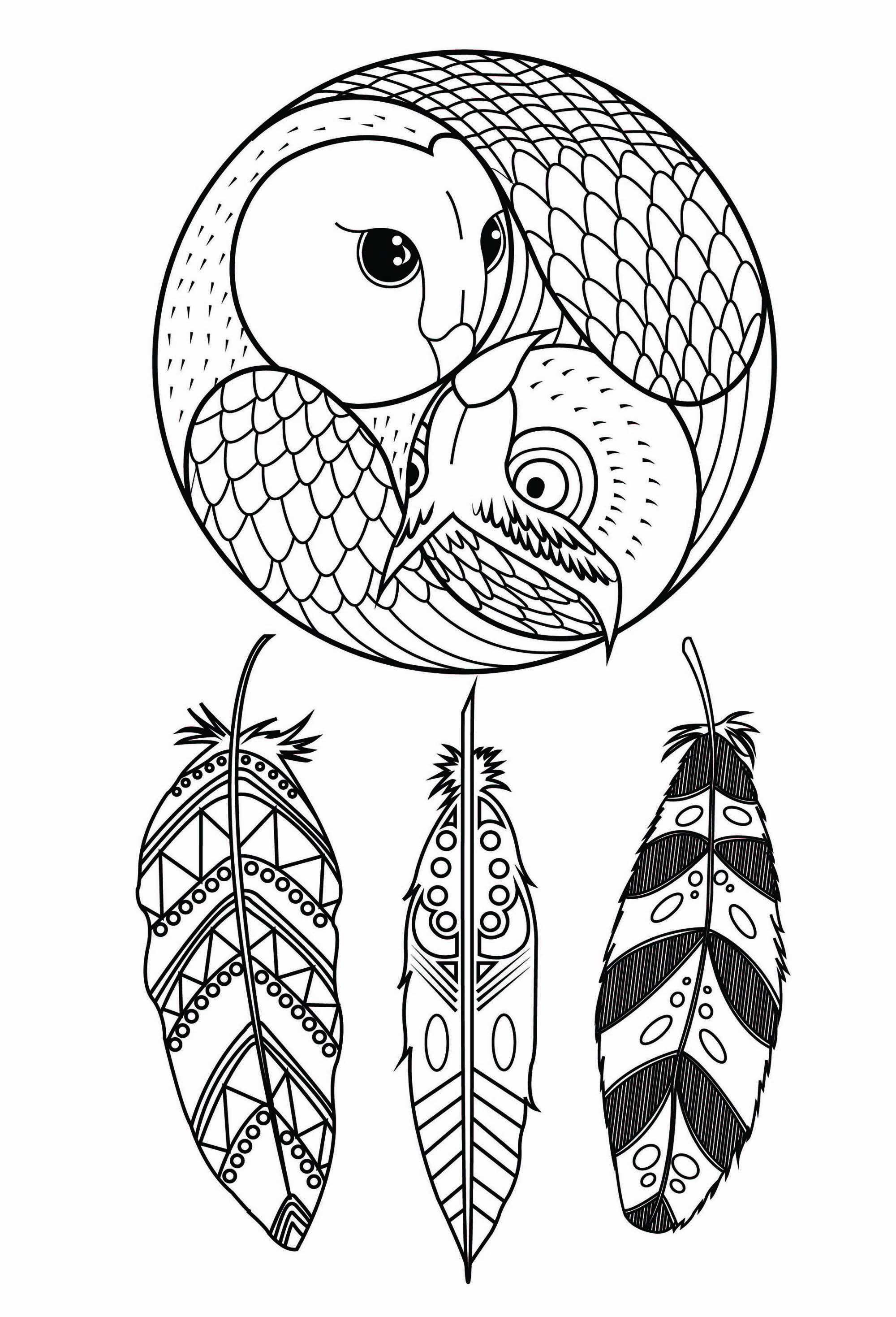 Owl dreamcatcher | Zen and Anti stress - JustColor : Discover all ...