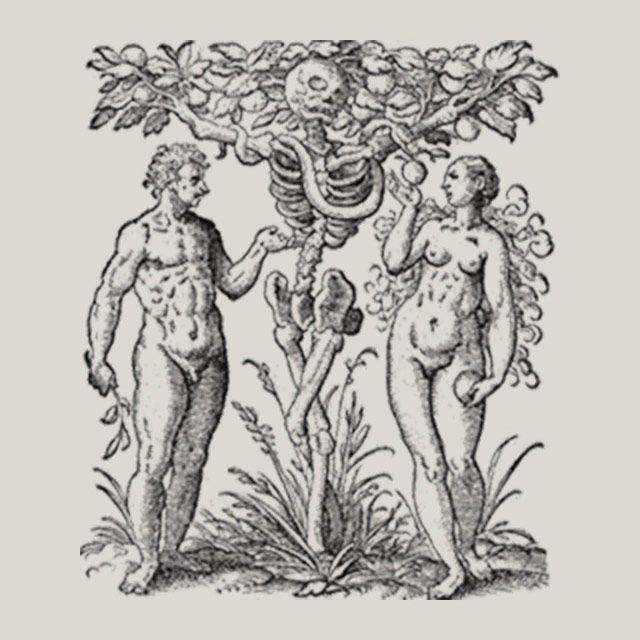 Hagstromer Medical History Library (with digital archives) https://hagstromerlibrary.ki.se/
