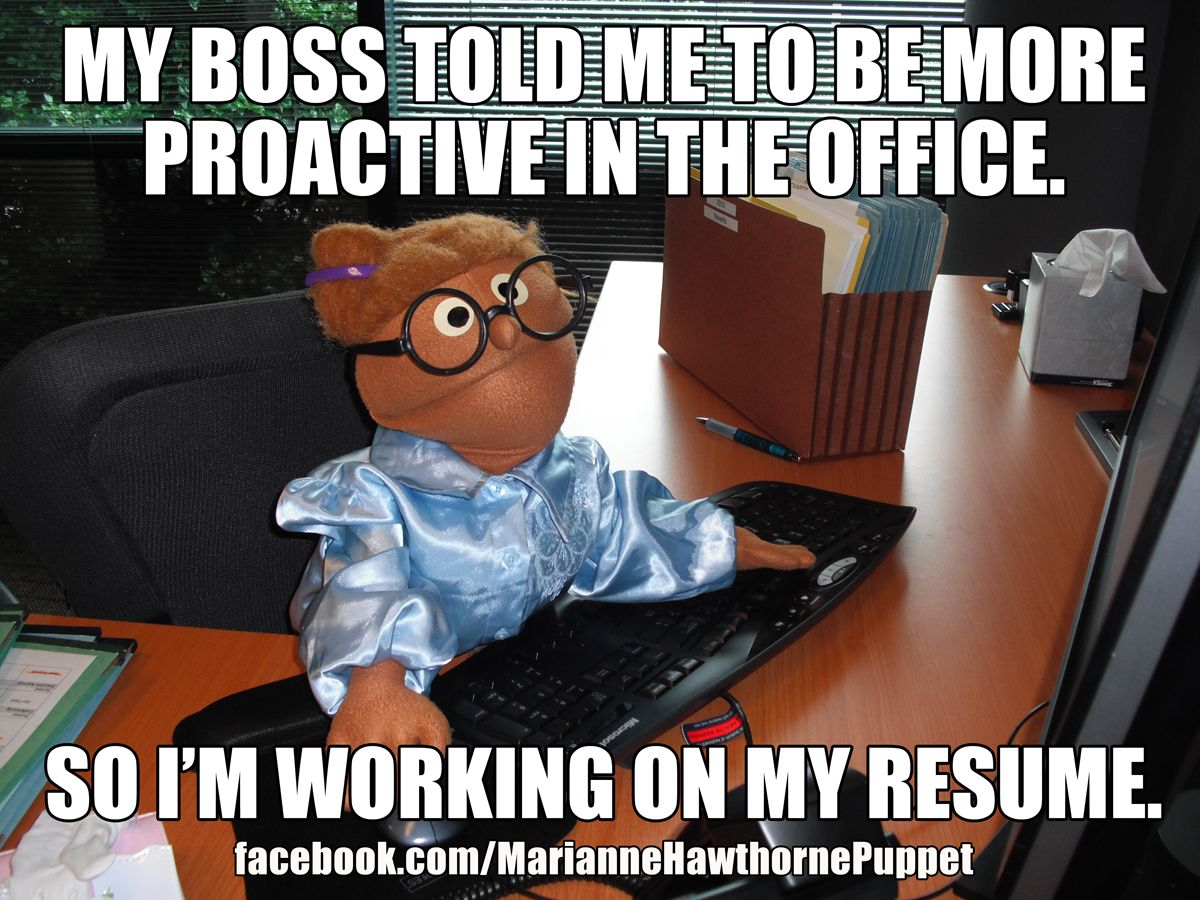 Funny Memes Job : Pin by bianca marcella on giggles pinterest resume work funny