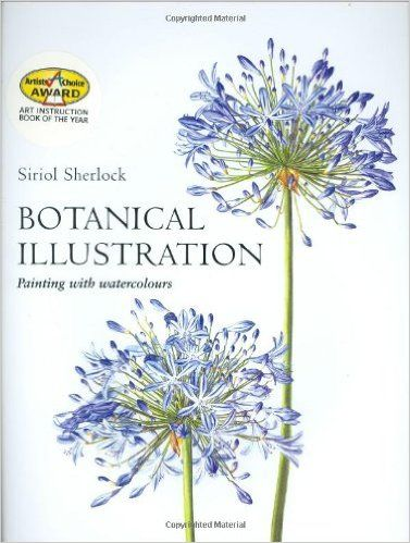 Botanical Illustration Painting With Watercolours Siriol