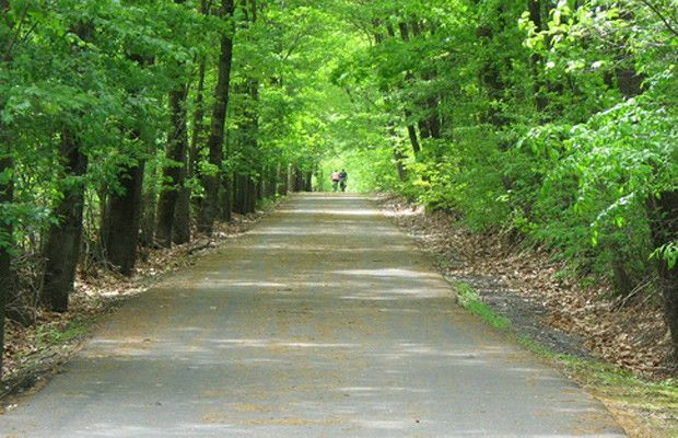 Best Biking Trails In The Hill Country With Images Bike Trails