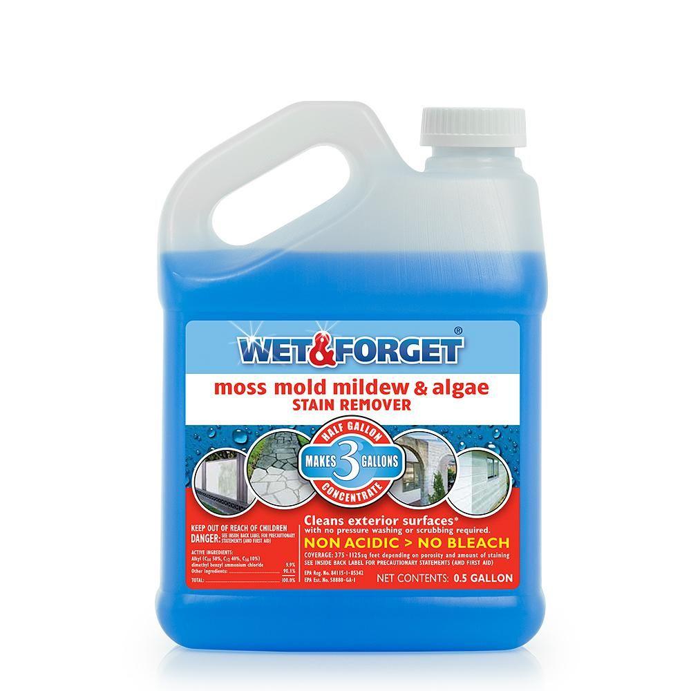 Wet Forget 0 5 Gal Moss Mold Mildew And Algae Stain Remover 800003 In 2020 Stain Remover Carpet Mildew Stains Mold Mildew