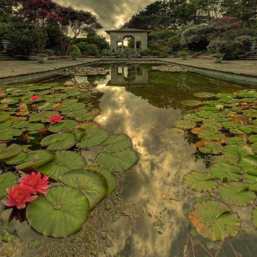 57 Amazing Beautiful Garden Ideas Inspiration And: Garinish Island (With Images)