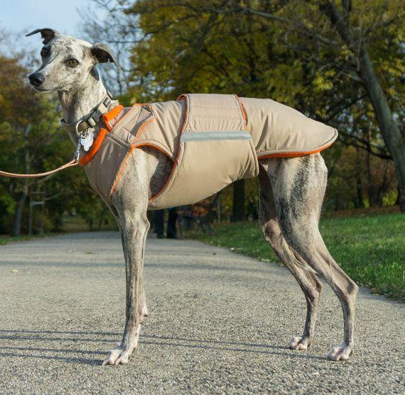 Whippet Extra Warm Winter Dog Coat - Dog Jacket with ...