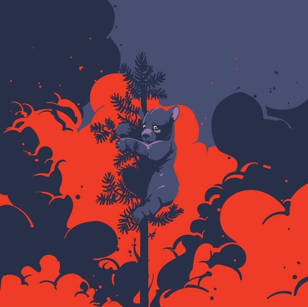 Forest Fire By Parkol Design Use