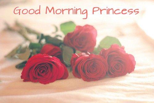 Good Morning Dhanshree Princess With Rose Images Gm Morning Love