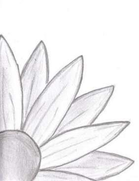 63 Ideas For Flowers Drawing Ideas Easy Easy Drawings Sketches Easy Doodles Drawings Easy Nature Drawings