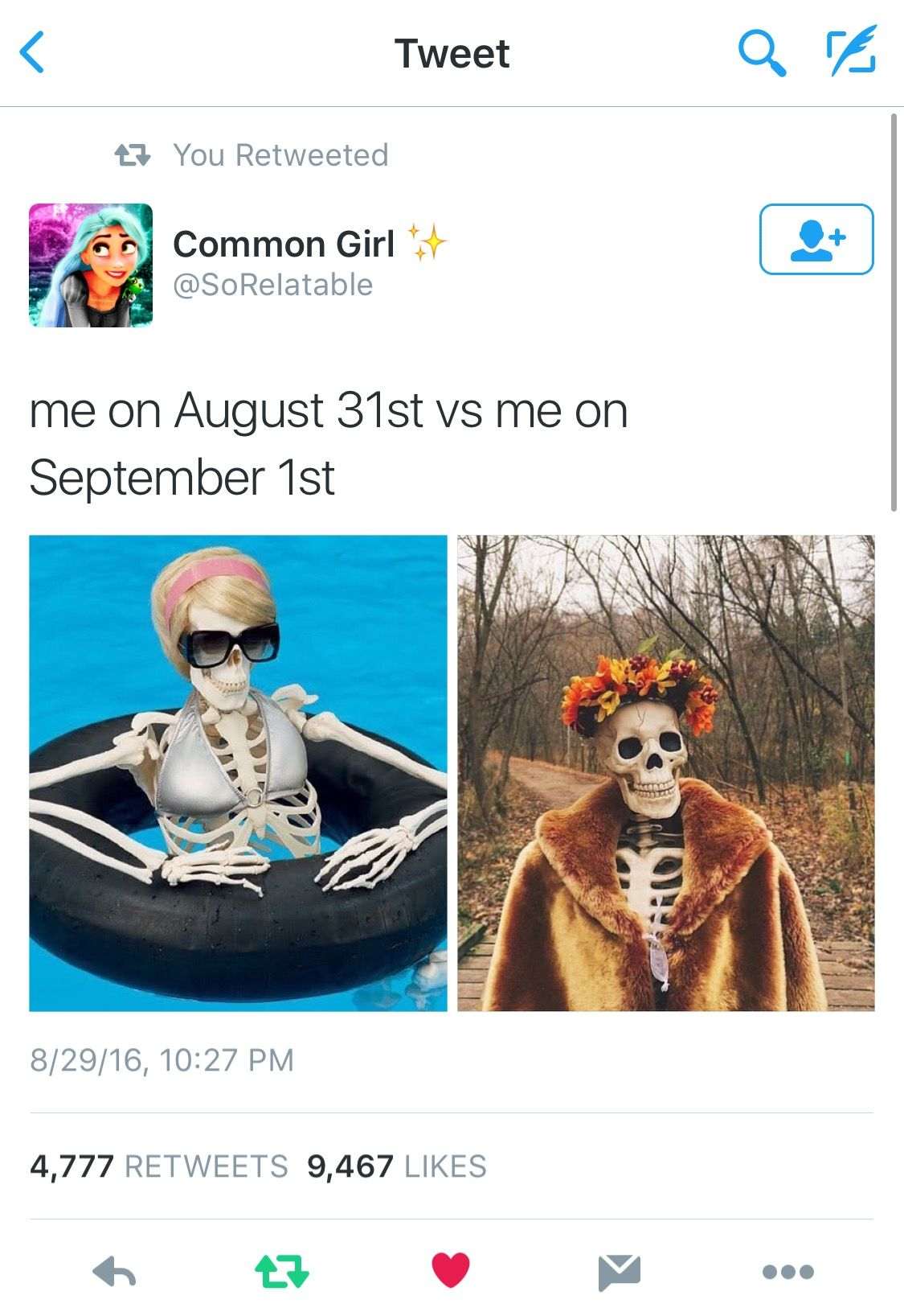 Pin by Baby A on Twitter tea ☕️ Halloween memes, Funny