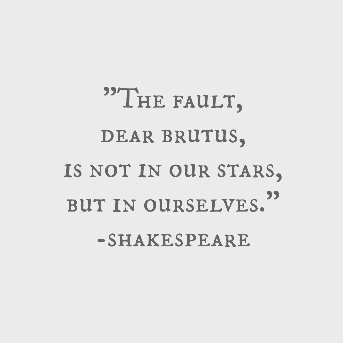 resume The Fault In Our Stars Resume julius caesar aka inspiration for the fault in our stars books stars