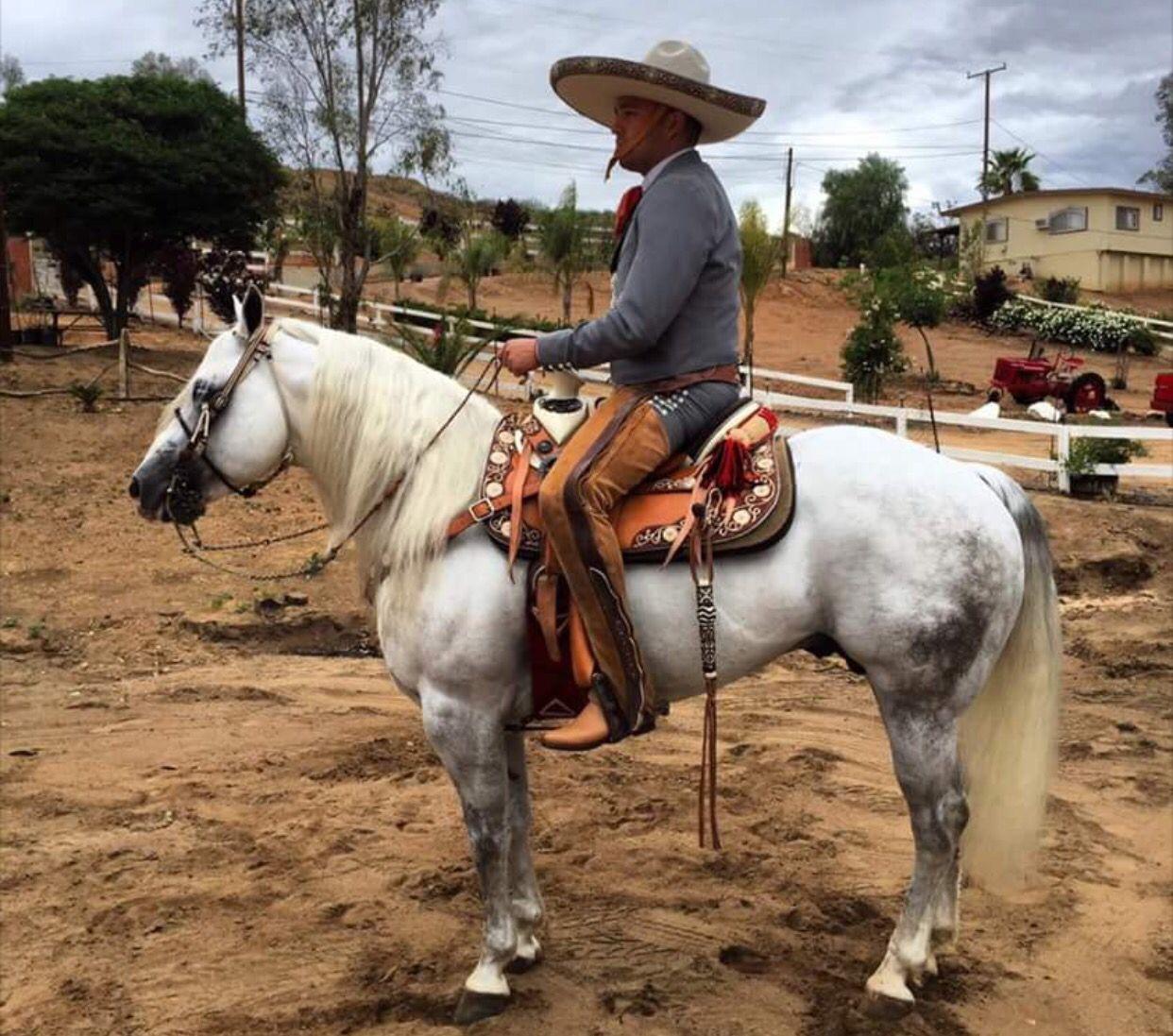 Herradura DE Oro | Sport Charreria | Pinterest | Western ...