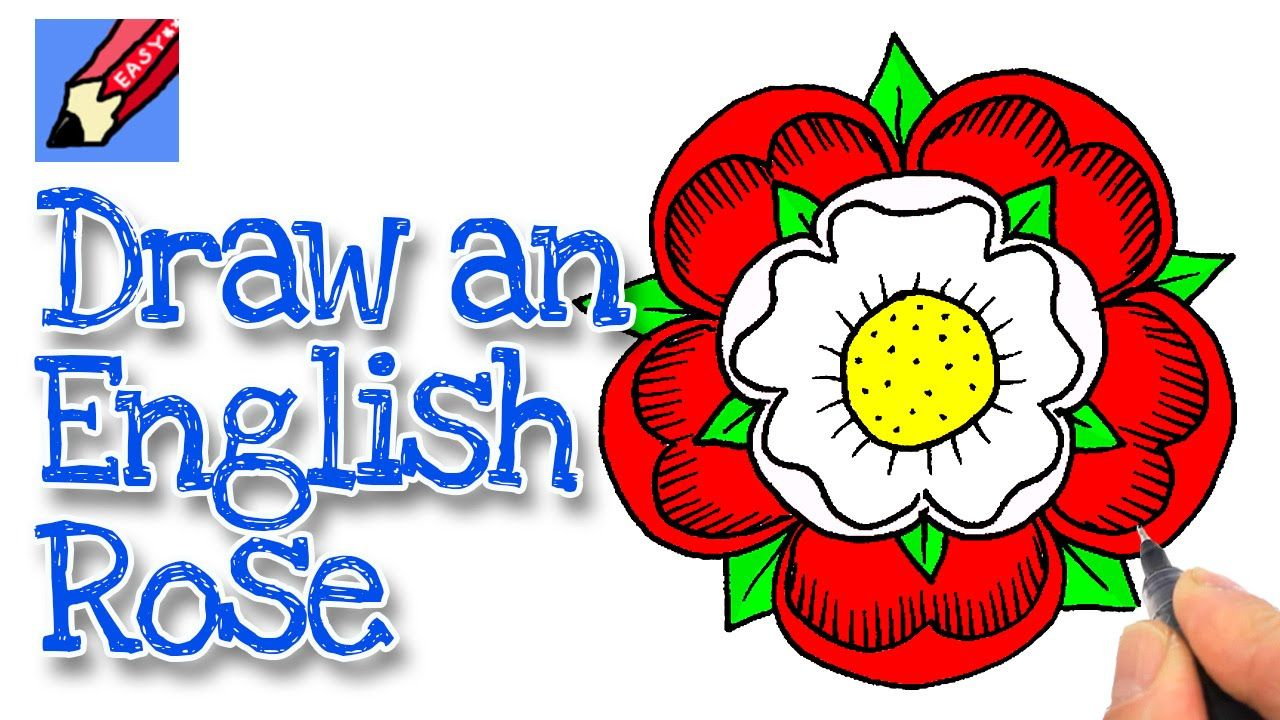 How To Draw An English Rose Real Easy