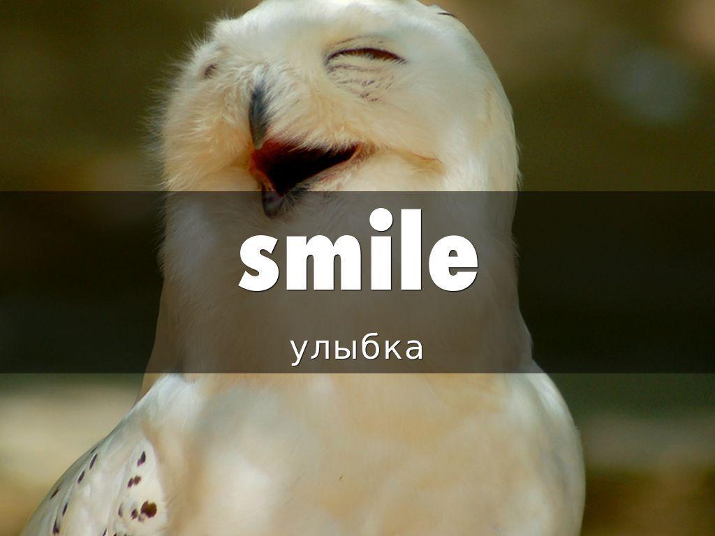 Слово улыбка на английском языке.   Smile, Laughter, Haiku