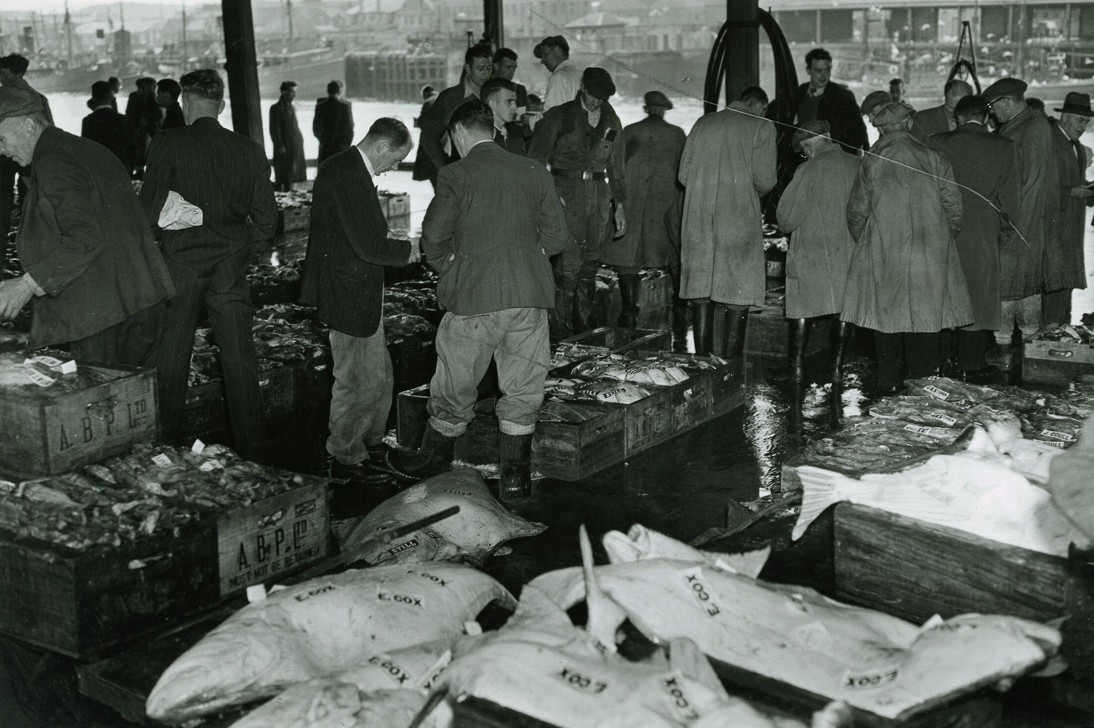 Dealers snap up boxes of fish at a market in July, 1955