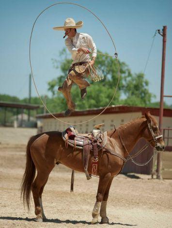 Fiesta Festivities Celebrate Decorating Ideas