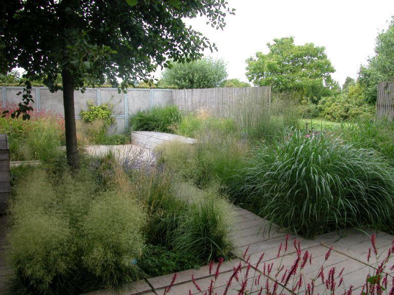tuin beplanten google zoeken tuin 2016 tuin