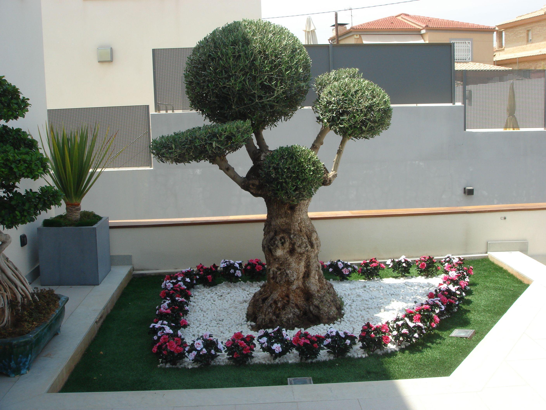 Decoracion Jardin Artificial