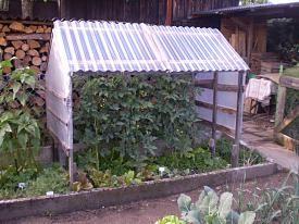 pin von andrea radtke auf garten tomaten haus tomatenhaus und tomatenhaus selber bauen. Black Bedroom Furniture Sets. Home Design Ideas
