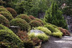Untitled (With images) | Landscaping a slope, Sloped ... on Inclined Backyard Ideas id=53517