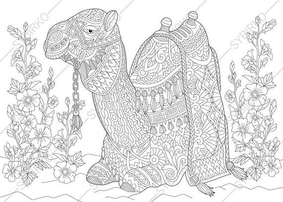 Camel 3 Coloring Pages Animal Coloring Book Pages For