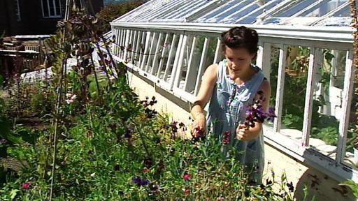 Diese Seite Existiert Nicht Mehr Rbb Mediathek Englischer Garten Garten Fernseher