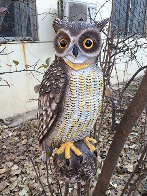 Zilin Plastic Owl Decoy Bird Deter Scarer Patio