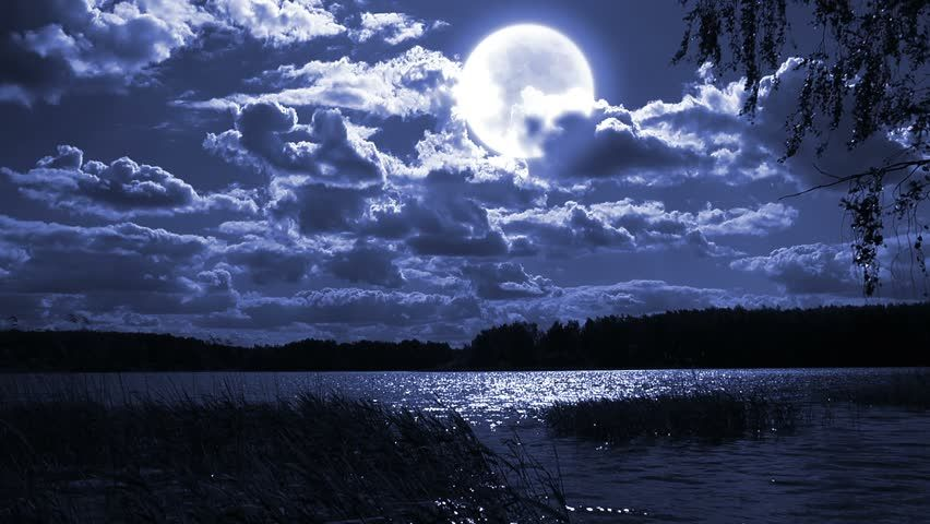 Full Moon Night Landscape With Stock Footage Video 100 Royalty Free 4406759 Shutterstock Night Landscape Landscape Full Moon Night