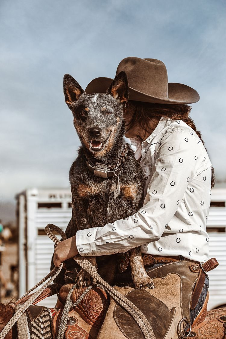 Pin By Madison Pollet On C O W G I R L U P Austrailian Cattle Dog Rodeo Life Cattle Dog
