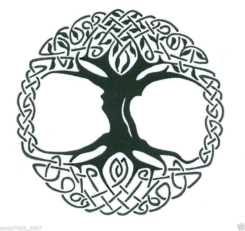 Celtic Tree of Life Vinyl Window Sticker Decal Car Wall ...