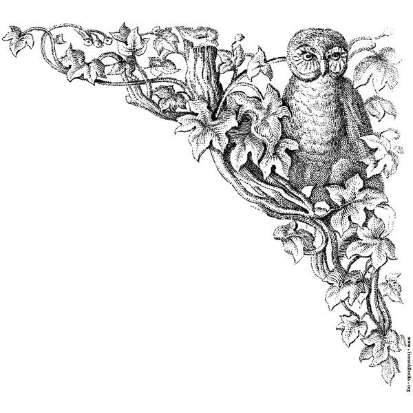 Corner decoration Owl with leaves and tree  liked on Polyvore featuring  fillers, backgrounds,