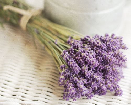 I sprinkle fresh lavender every friday on my bed after I wash my sheets..
