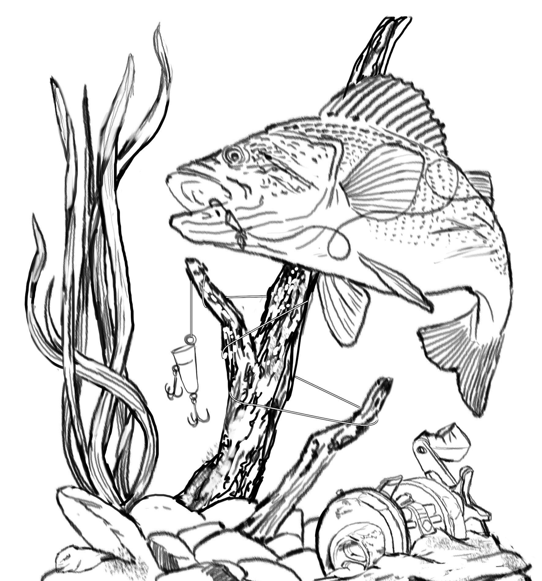 Bass Fishing Clip Art