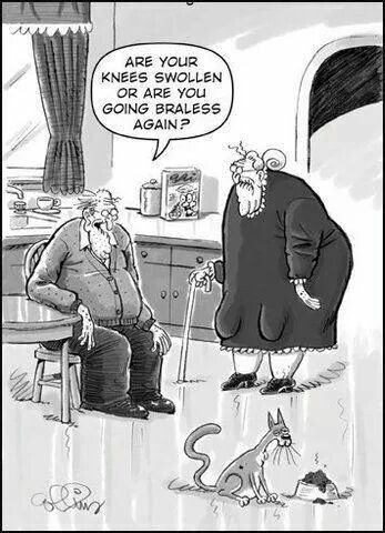 Pin By Jan Groth On Growing Older Should Be Fabulous Funny Old