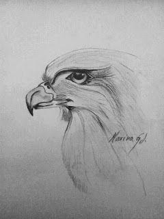 Palabras en el tiempo: Dibujo de un águila