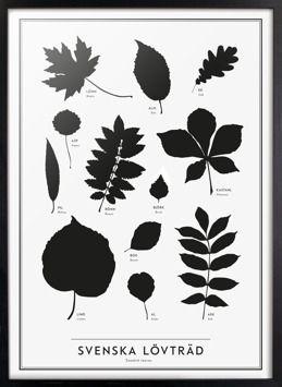 The SE Collection | Kunskapstavlan. Art that conveys knowledge. Ecofriendly.