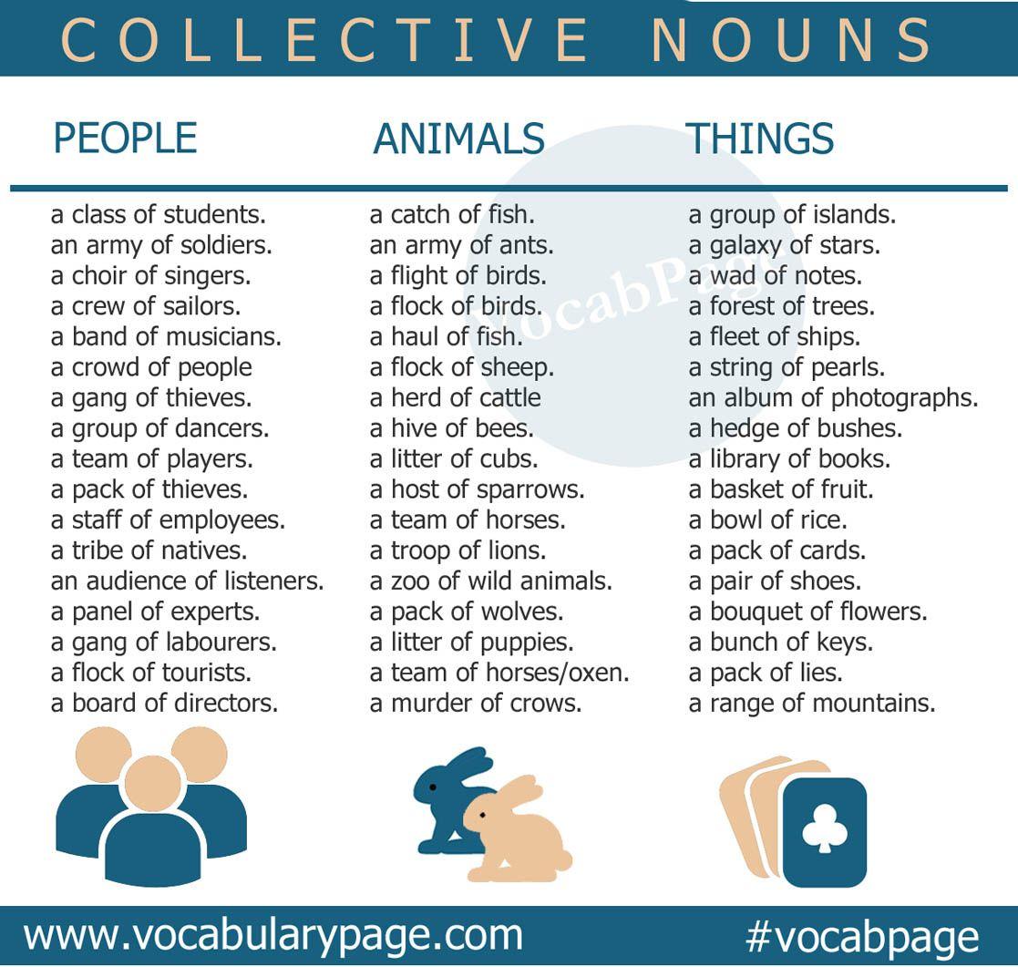 Collective nouns #English www.vocabularypage.com                                                                                                                                                                                 Mais