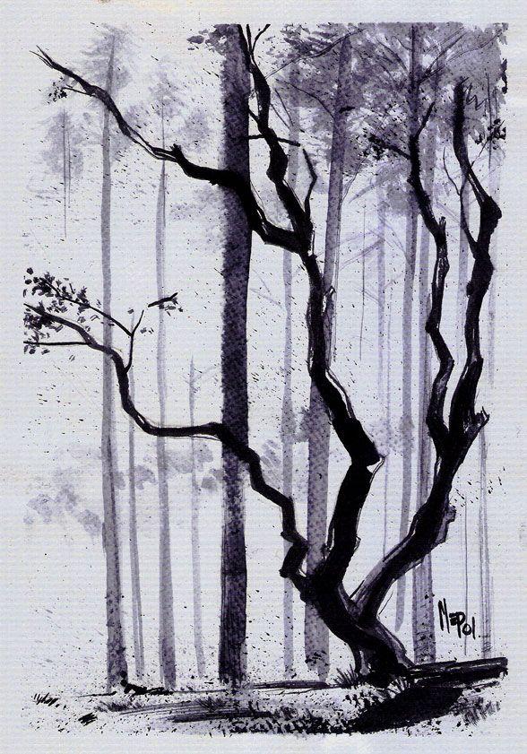 árbol Solitario Ilustracion En Tinta China Tinta China Dibujos Tinta China Dibujo A Tinta