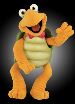 Image result for WINSTON THE TURTLE