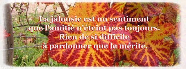 citation jalousie d'amitie