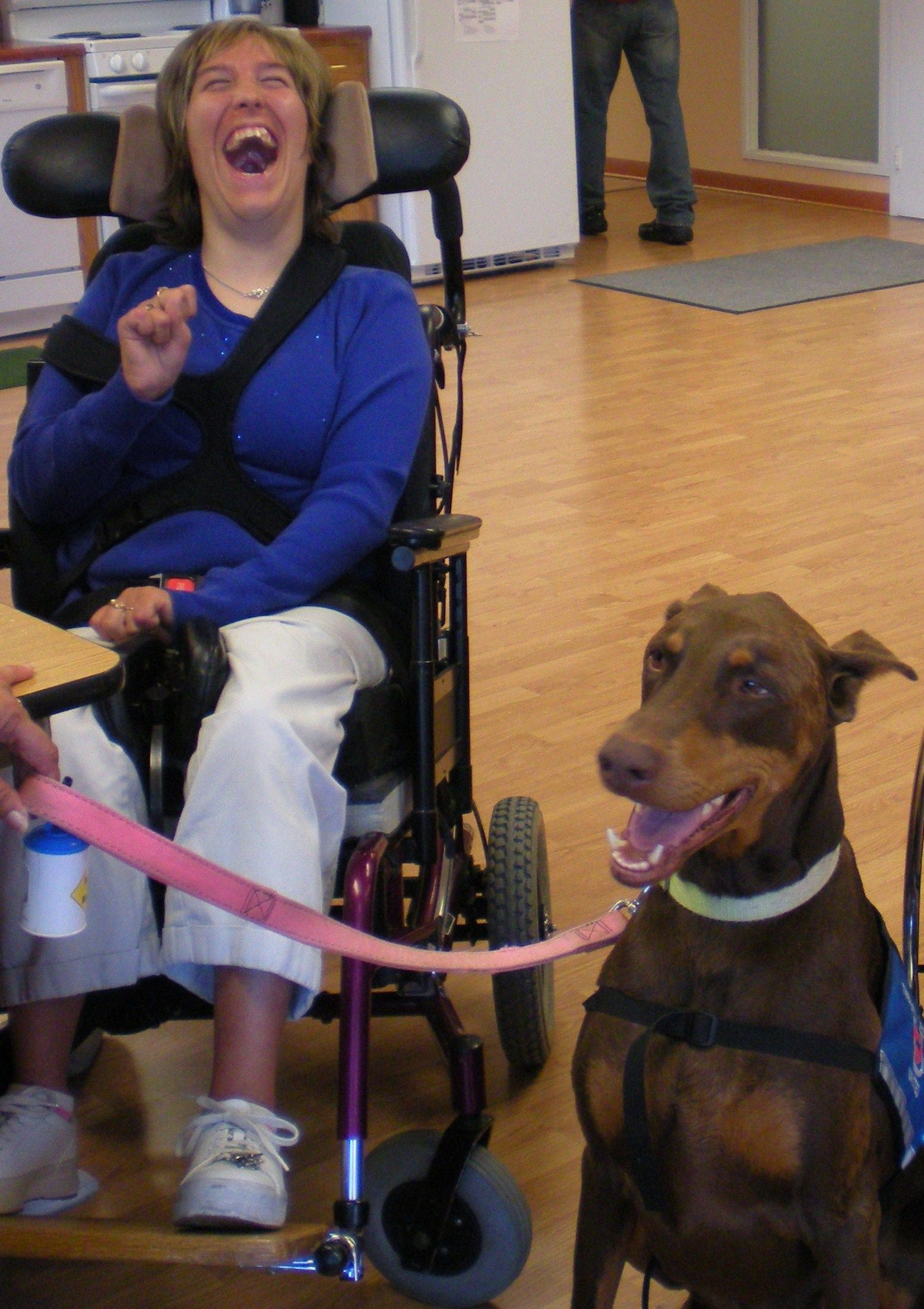 I will have my own red doberman therapy dog but i will do