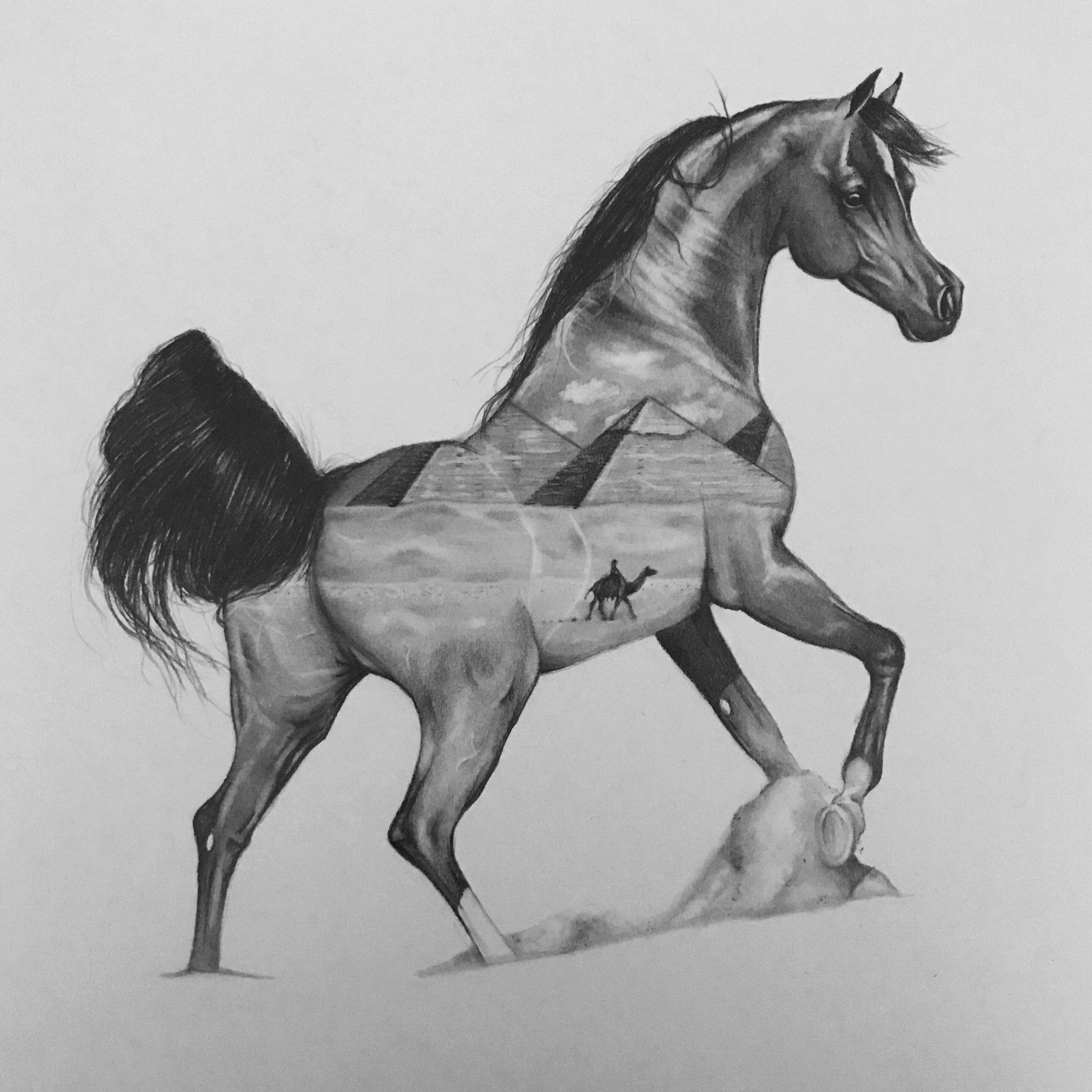 desert horse drawing pencil koń rysunek Rysunek
