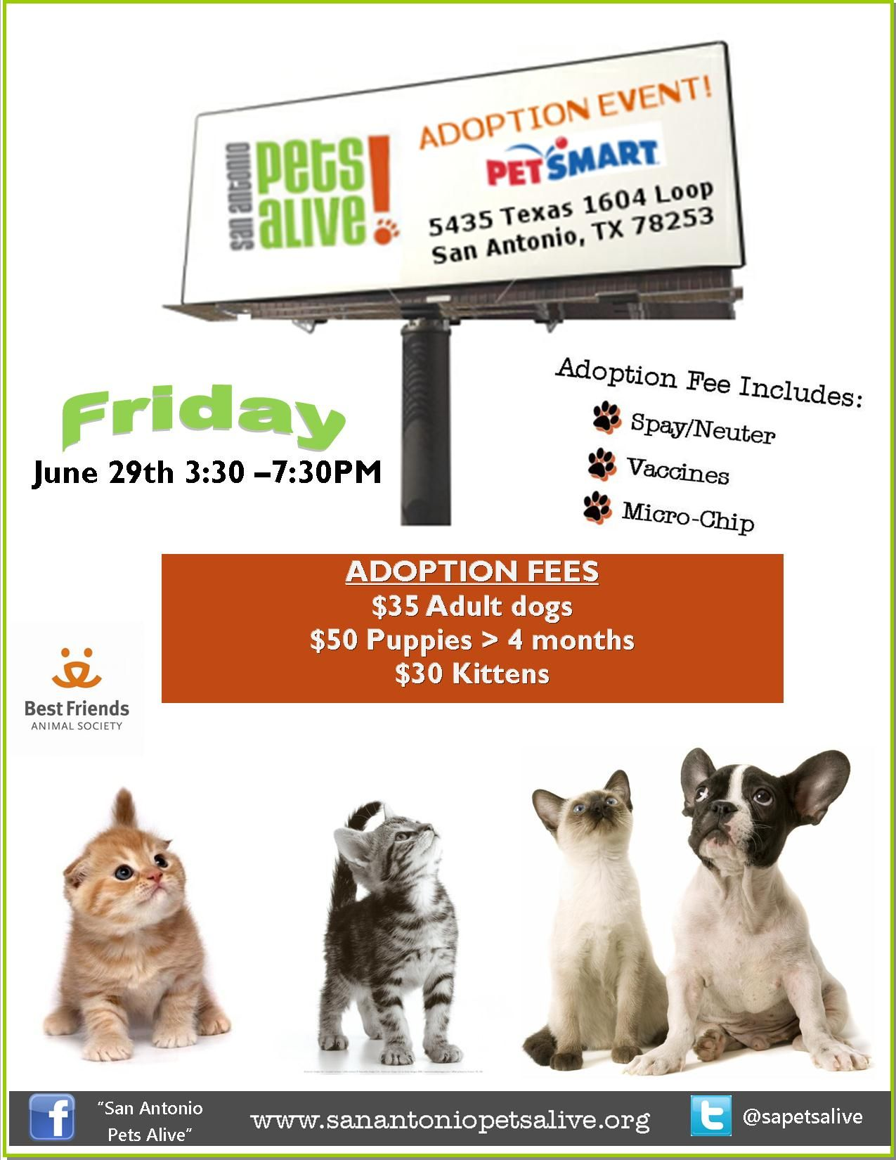 Adoption Events This Weekend Come Save A Life And Gain A New Best Friend Friday June 29th From 3 30 7 30 Pm At Alamo Animal Society Puppies Kittens
