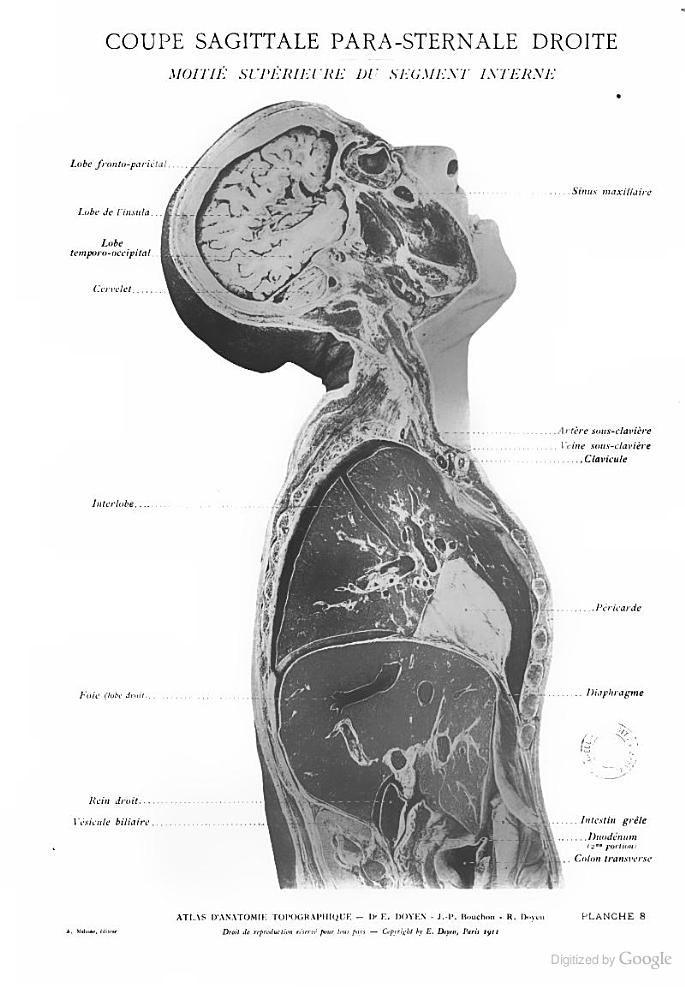 Ziemlich Beste App Für Die Menschliche Anatomie Bilder - Anatomie ...