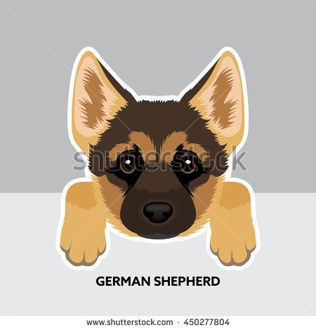 Vector Illustration Portrait Of German Shepherd Puppy Dog