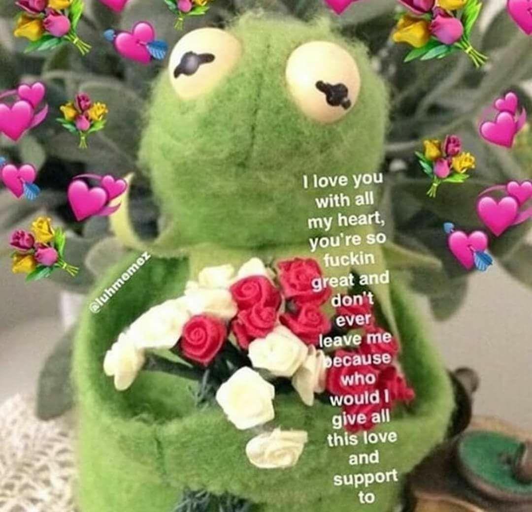 Pin By Trin On Memes Cute Love Memes Love Memes Cute Memes