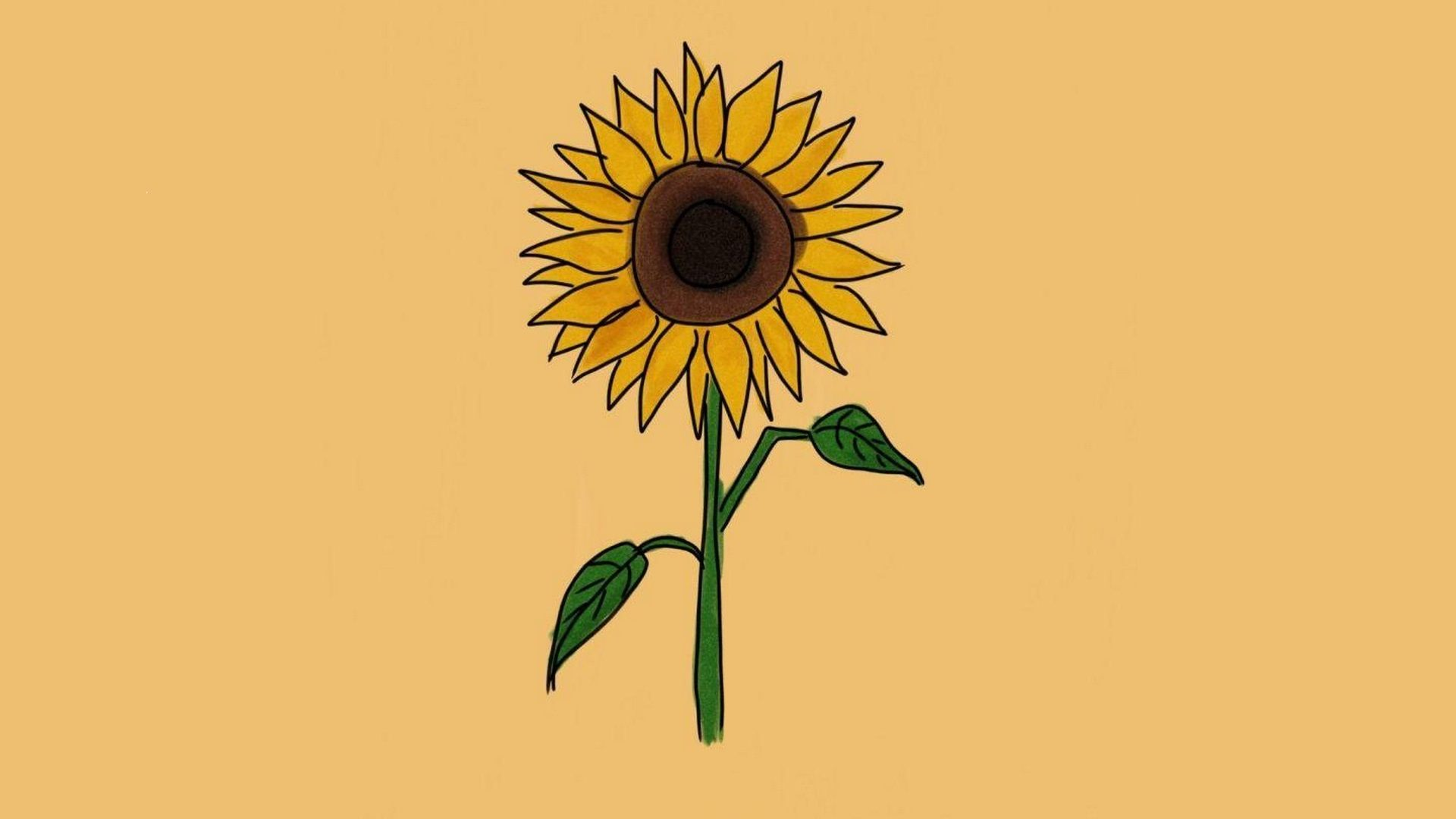 Image Result For Sunflower Wallpaper Iphone 7 Papeis De Parede Para Iphone Imagem De Fundo Para Iphone Planos De Fundo